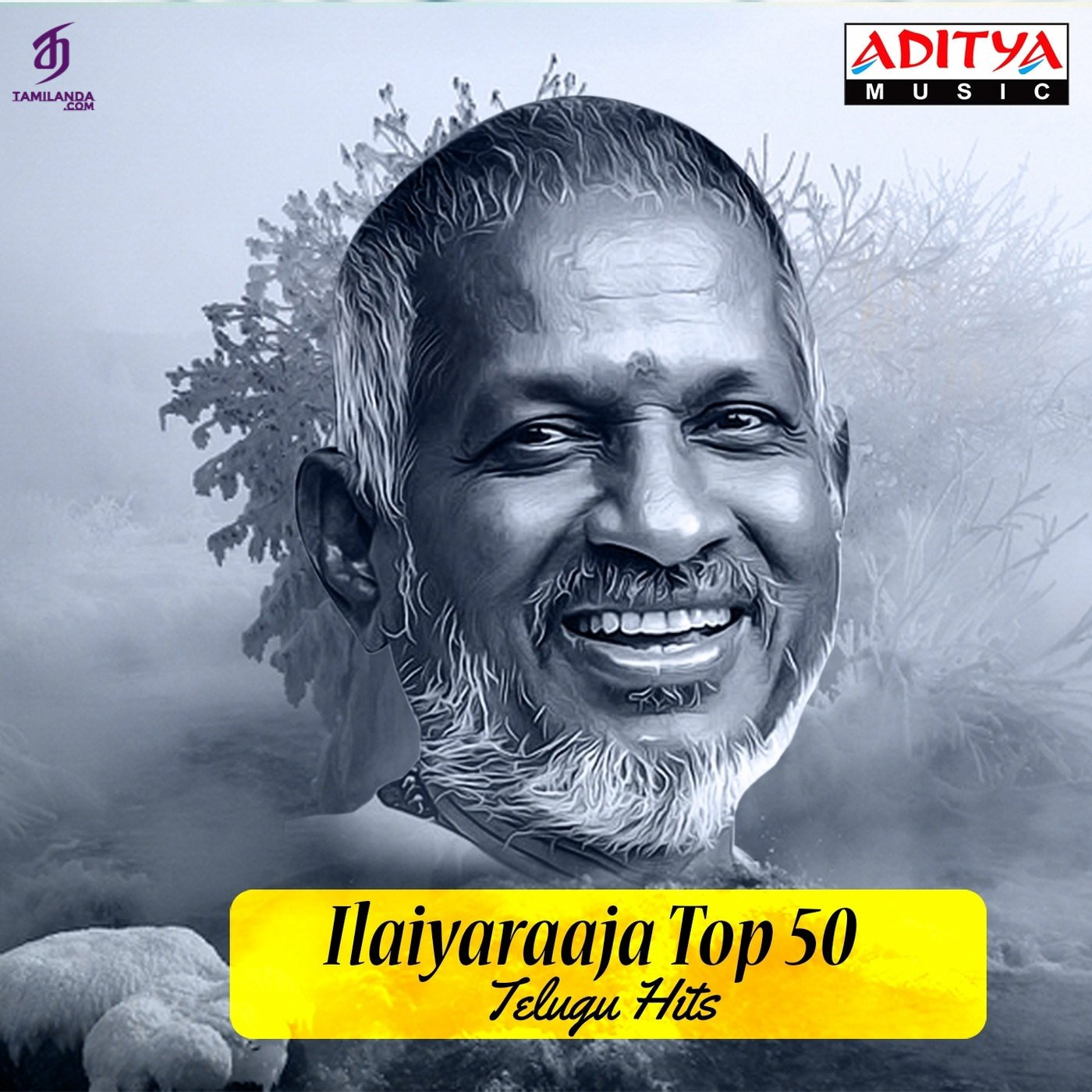 Ilaiyaraaja Top 50 Telugu Hits FLAC Songs