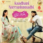 Kaadhani Nuvvantunnadhi (From Happy Wedding)