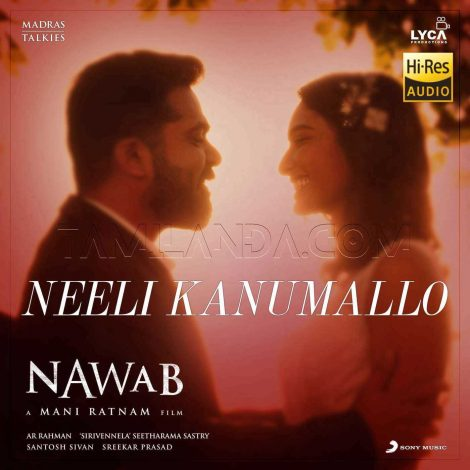 "Neeli Kanumallo (From ""Nawab"") – Single 24 BIT FLAC Song"