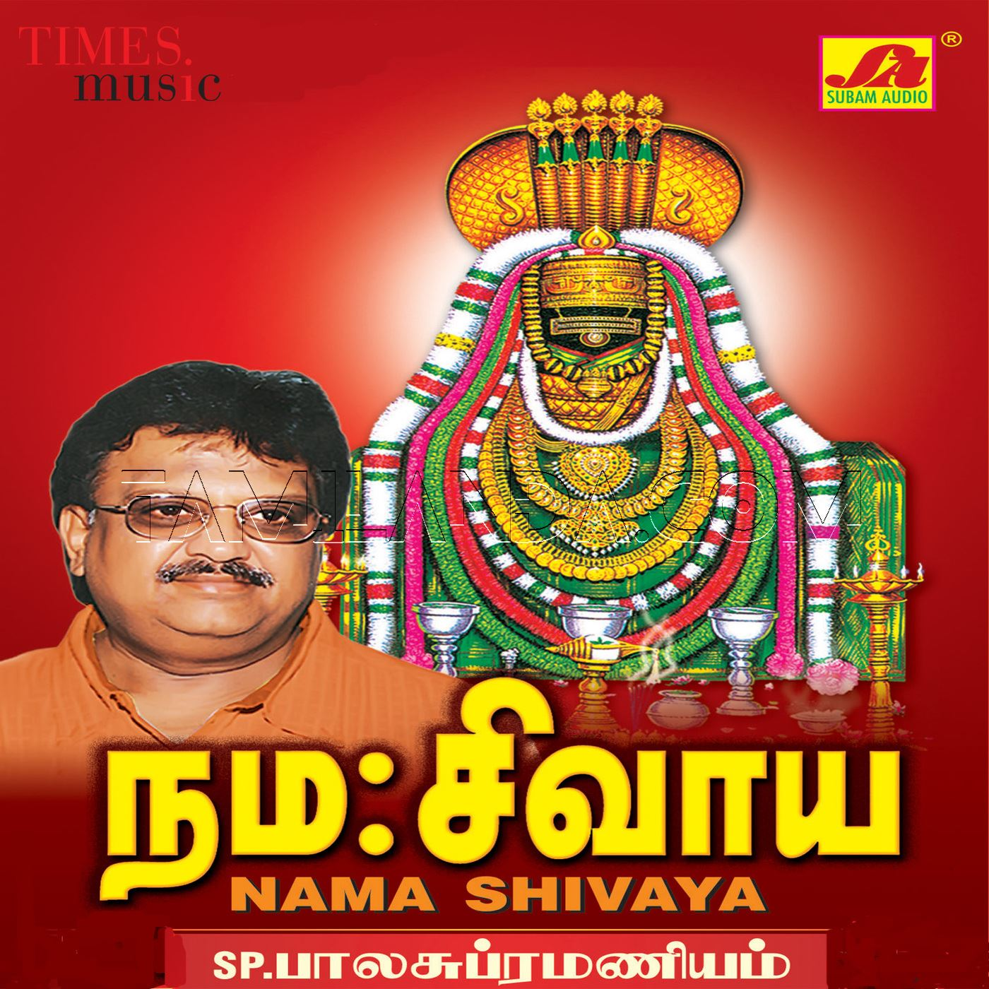 Nama Shivaya Devotional FLAC Songs